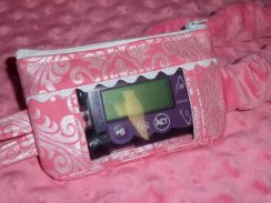 Pink Hollywood Sparkle Damask Window Insulin Pump Pouch Case